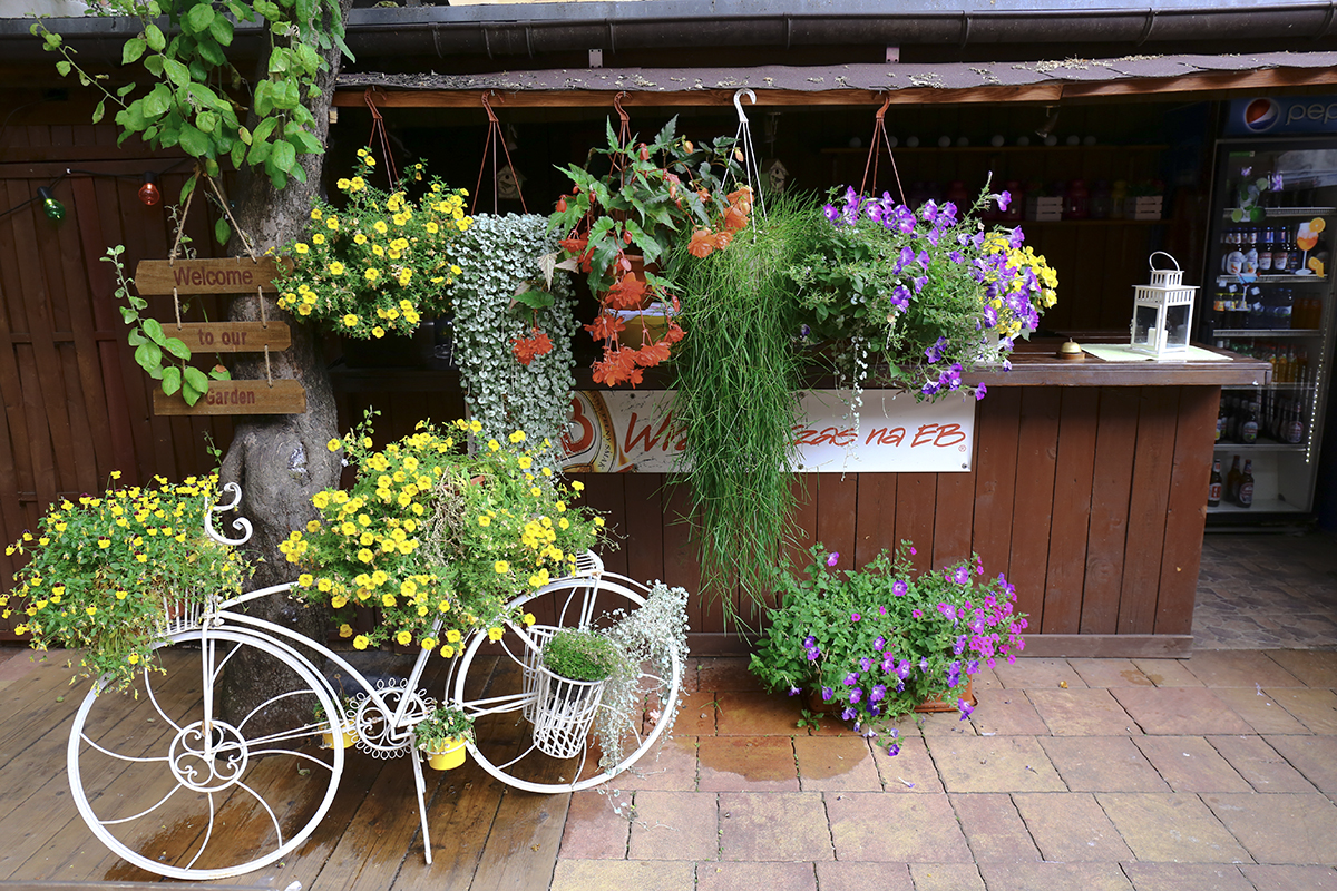 piekny ogródek w restauracji